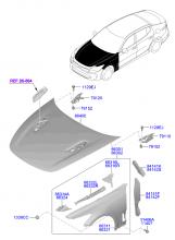 крылья и панель капота